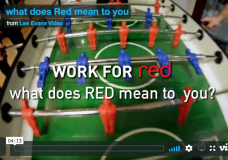 Why Work for Red SAP Recruitment specialists?